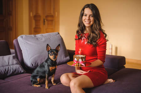 toy terrier: woman and toy terrier with dog cake on sofa both looking in camera