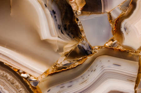 polished: Piece of polished agate texture  horizontal texture