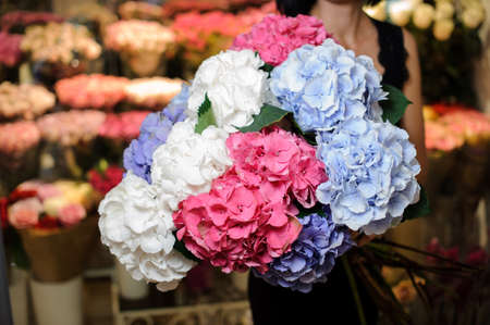 Elegant and beautiful bouquet of big and colorful flowers in woman hands. No face, close up Stock Photo