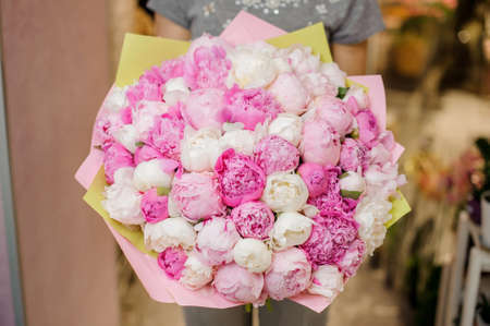 Woman holding a large bouquet of pink and white peonies for Valentines day on the blurred background Stock Photo