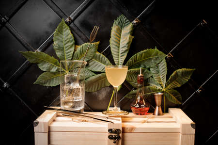 Elegant cocktail glass with yellow summer cocktail, bottle with red liquor and bar utensils arranged on the background of green leaves and black wall on wooden box