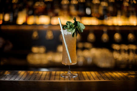 Sherry Cobbler in the cocktail glass decorated with mint branch and tubule on the blurred backround of bar