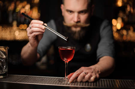 Portrait of bartender dropping cherry in an alcohol drink