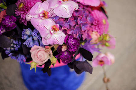 Close up box of pink, violet and blue flowers