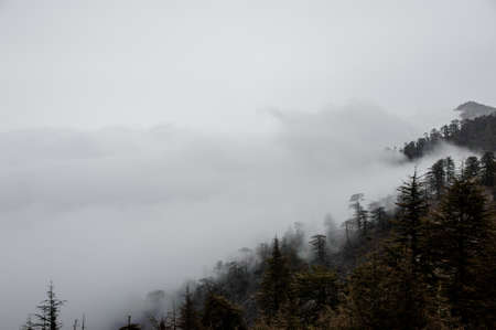 View of mountain slopes in the fog