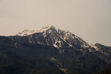 View of the mountains and forest underneath