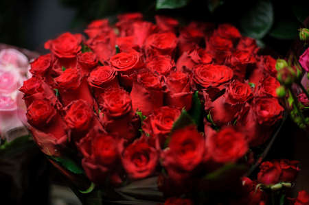 Beautiful bouquet of bright red color roses in the transparent wrapping paper in the blurred background in the flower shop