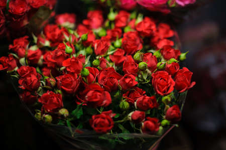 Beautiful bouquet of red roses with closed green buds in the transparent wrapping paper in the blurred background in the flower shop