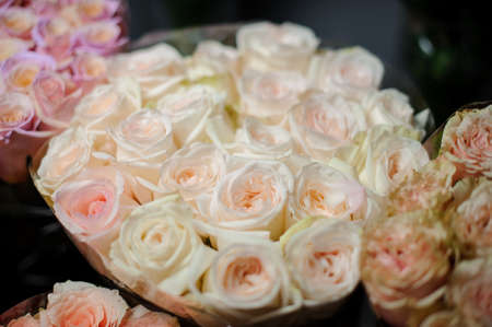 Beautiful bouquet of tender creamy color roses in the transparent wrapping paper Stock fotó