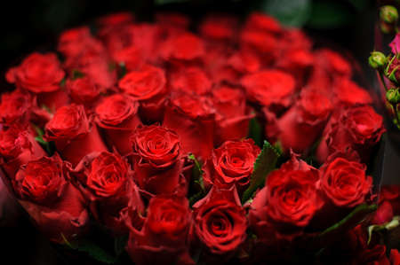 Beautiful bouquet of red color roses in the transparent wrapping paper in the blurred background in the flower shop Stock fotó