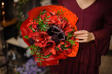 Woman holding a bouquet of bright red amaryllis with leaves and berries in the wrapping paper in the blurred background of flower shop Stock fotó