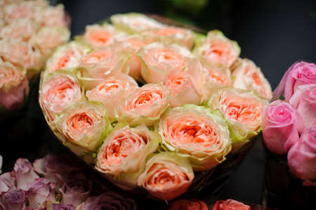 Beautiful bouquet of tender green peach color roses in the transparent wrapping paper