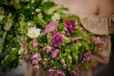 close-up of pink and white flowers and greenery in the hands of girl Banque d'images