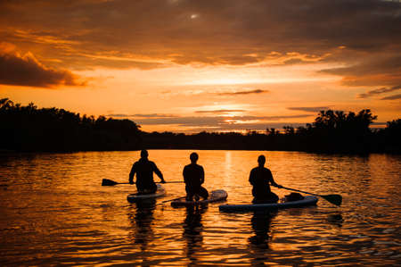 rear view on people on sup boards with paddles floating on the river at sunset. 스톡 콘텐츠