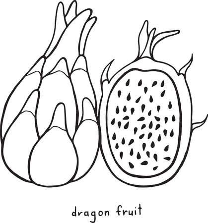 Página Para Colorear De Frutas De Serpiente. Arte Gráfico Vector ...