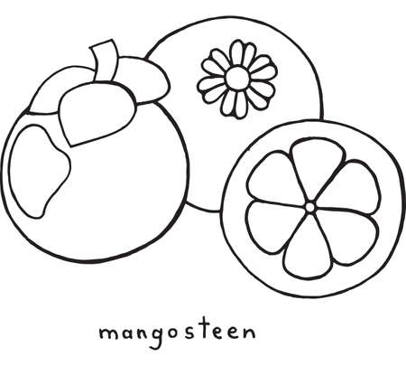 Mangosteen Coloring Page Graphic Vector Black And White Art For Books Adults