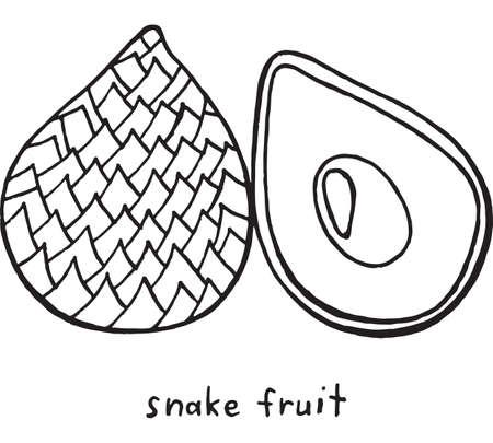 Página Para Colorear De Fruta Del Dragón. Arte Gráfico Vector Doodle ...