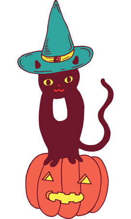 autumn colouring: Black cat with hat and pumpkin. Halloween colorful illustration. Illustration