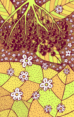 Elderflower - floral illustration. colorful plant drawing. Graphic psychedelic multicolored line art. Vector artwork.