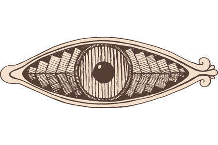 Shamanic eye - engraving style. Brown colored line artwork. Mystical occult witch eye. Shamanic sticker. Vector illustration. Stock fotó - 149902825