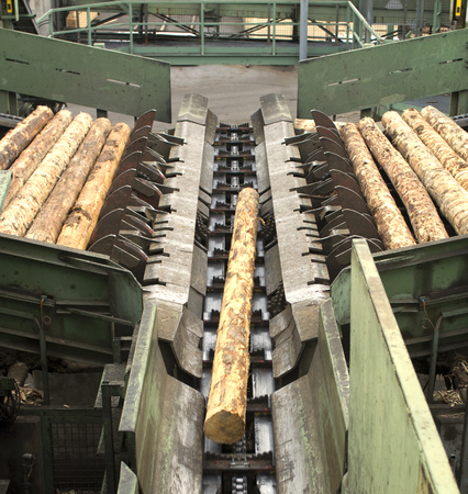 Saw mill - cutting line in modern manufactury. The line in the processing of logs to finished plates.