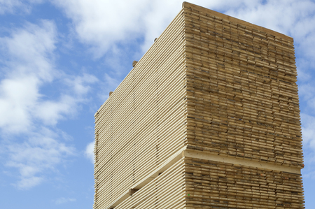 Lumber industry - finished lumber against sky. Machined wood planks deposited and stacked on heaps Stock Photo