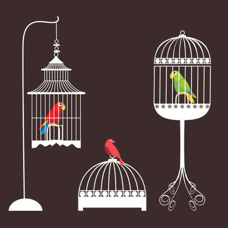 Birdcage Set Vector