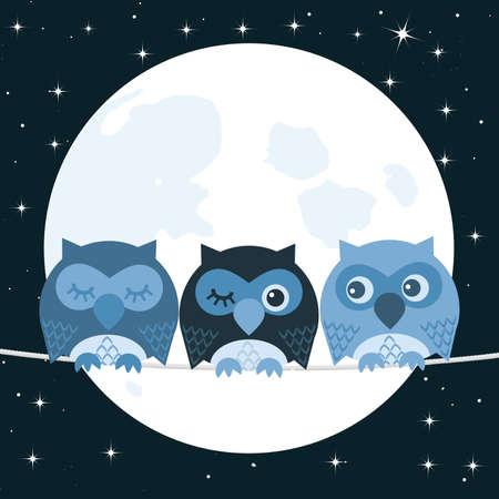 night bird: Owl Illustration