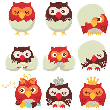 eggshells: Owl Illustration