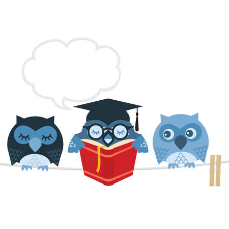 adult learning: Owl Illustration