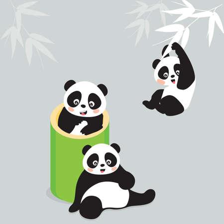 Panda Vektoros illusztráció