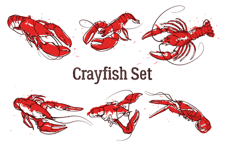 Hand drawn prawn or lobster. Text CRAYFISH SET. Sketch grunge vector set good for pub menu decoration Stock Photo