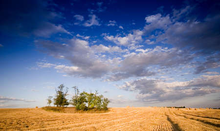 Summer hay bale in a ungarian field, and beautiful landscape photo