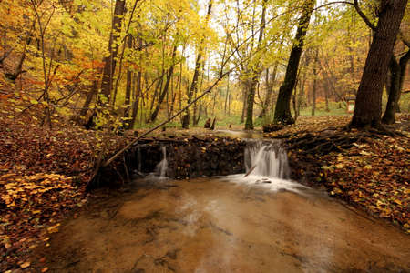 soften:  A secluded cascade in the forests of Hungary. Taken with a slow shutter speed to smooth and soften the water. Nice detail in the water can be seen as it tumbles and swirls its way downstream. Stock Photo