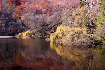 autumn river photo