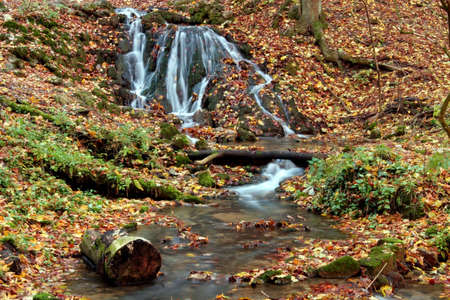 Creek in the forest in Autumn Stock Photo - 2104382