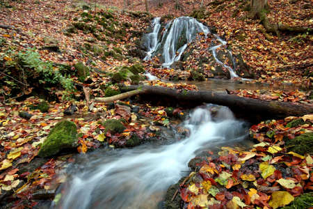 Creek in the forest in Autumn Stock Photo - 2104119