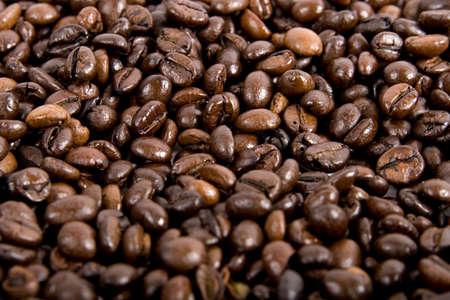 Fresh coffee beans background  photo
