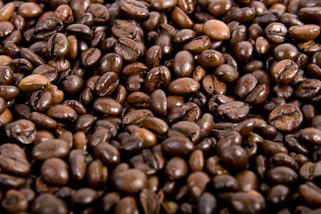 Fresh coffee beans background  photo