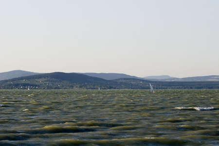 coast line: Balaton lake- Hungary