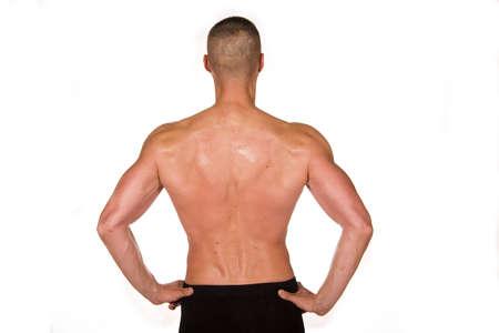 Muscular male Stock Photo - 3554376