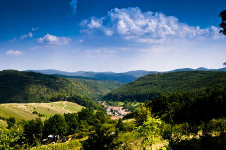 green mountain forest Stock Photo - 5293003