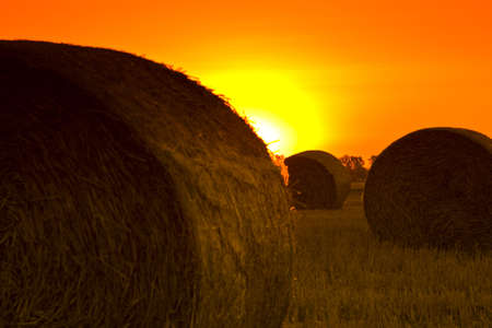 End of day over field with hay bale photo