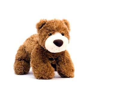 rnanimal: Teddy Bear