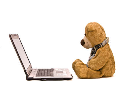 rnanimal: teddy bear and laptop