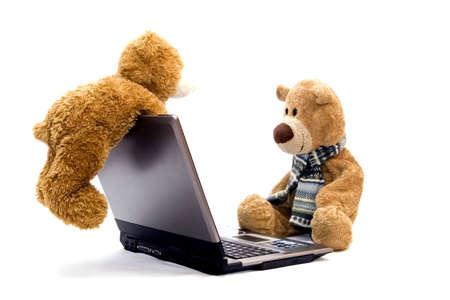 teddies: teddy bear and laptop
