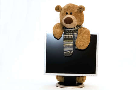 Teddy bear and monitor photo