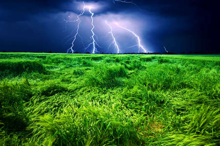 Storm over wheat field photo