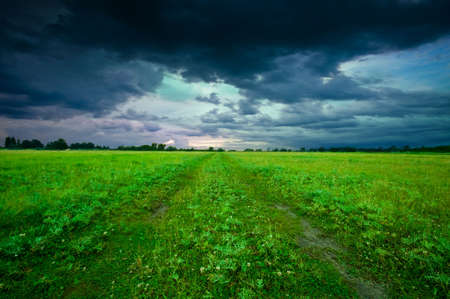 thunderstorm: Green field in summer Stock Photo