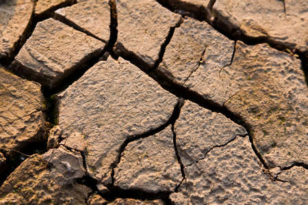 parch: Landscape with cracked land  Stock Photo